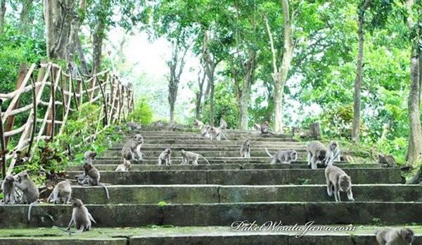 Goa Kreo Semarang Legenda Sunan Kalijaga Dan Kayu Jati Masjid Demak
